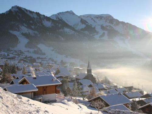 Ski rental shop(s) Chatel